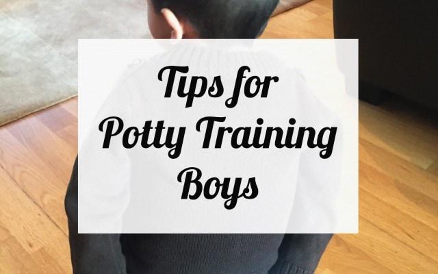 tips-for-potty-training-boys