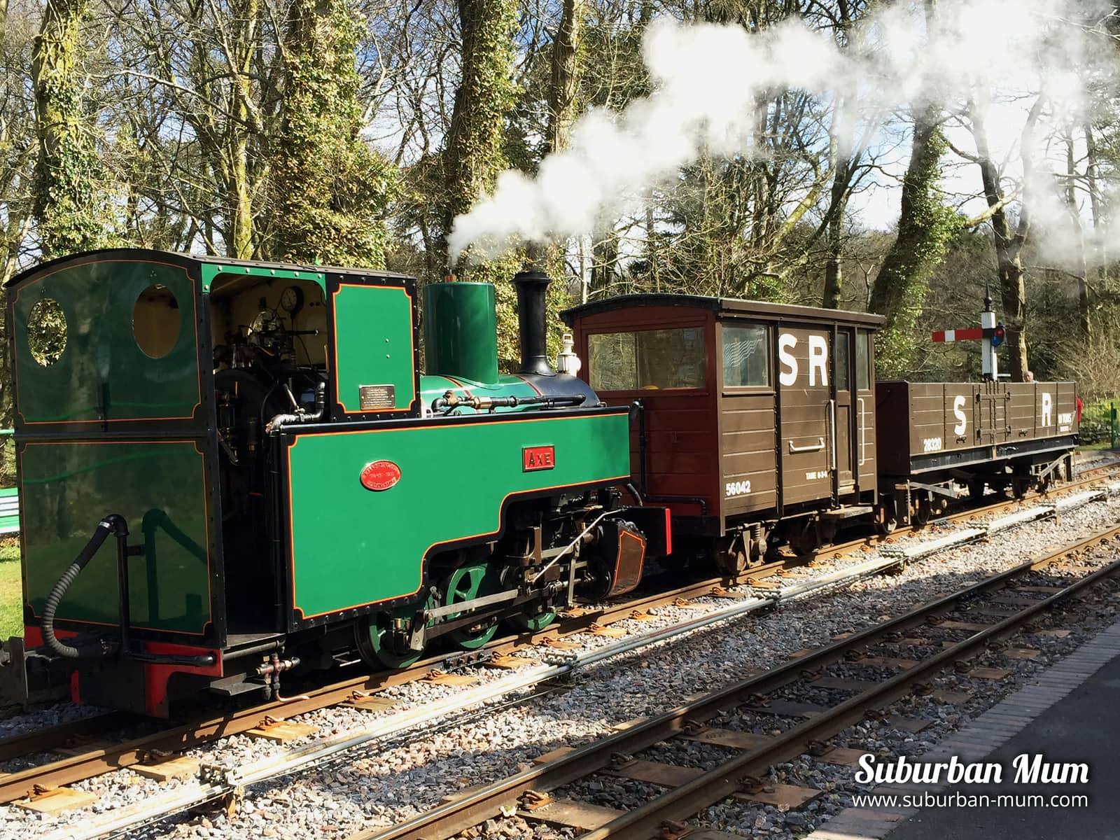 woody-bay-train