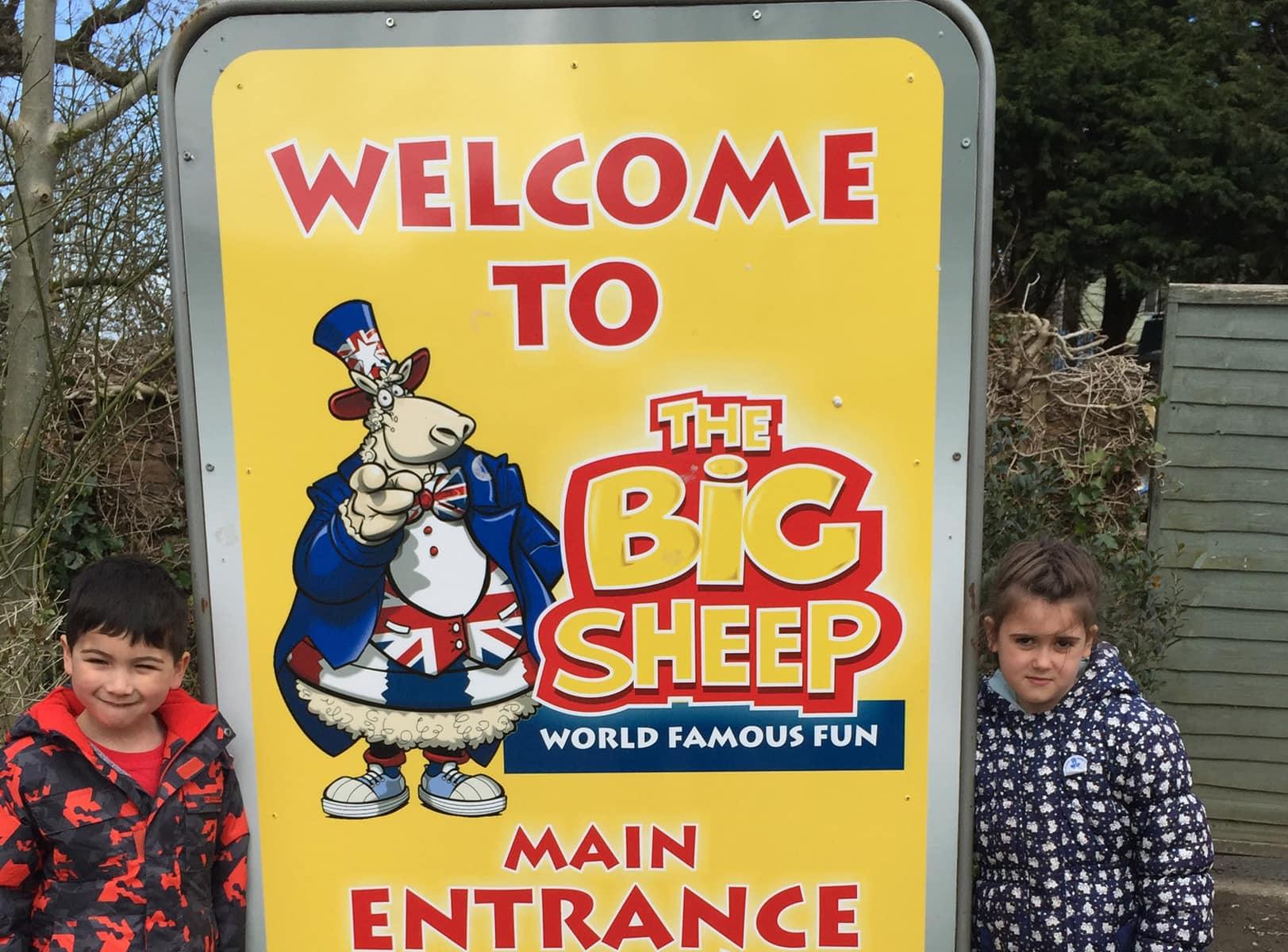 the-big-sheep1