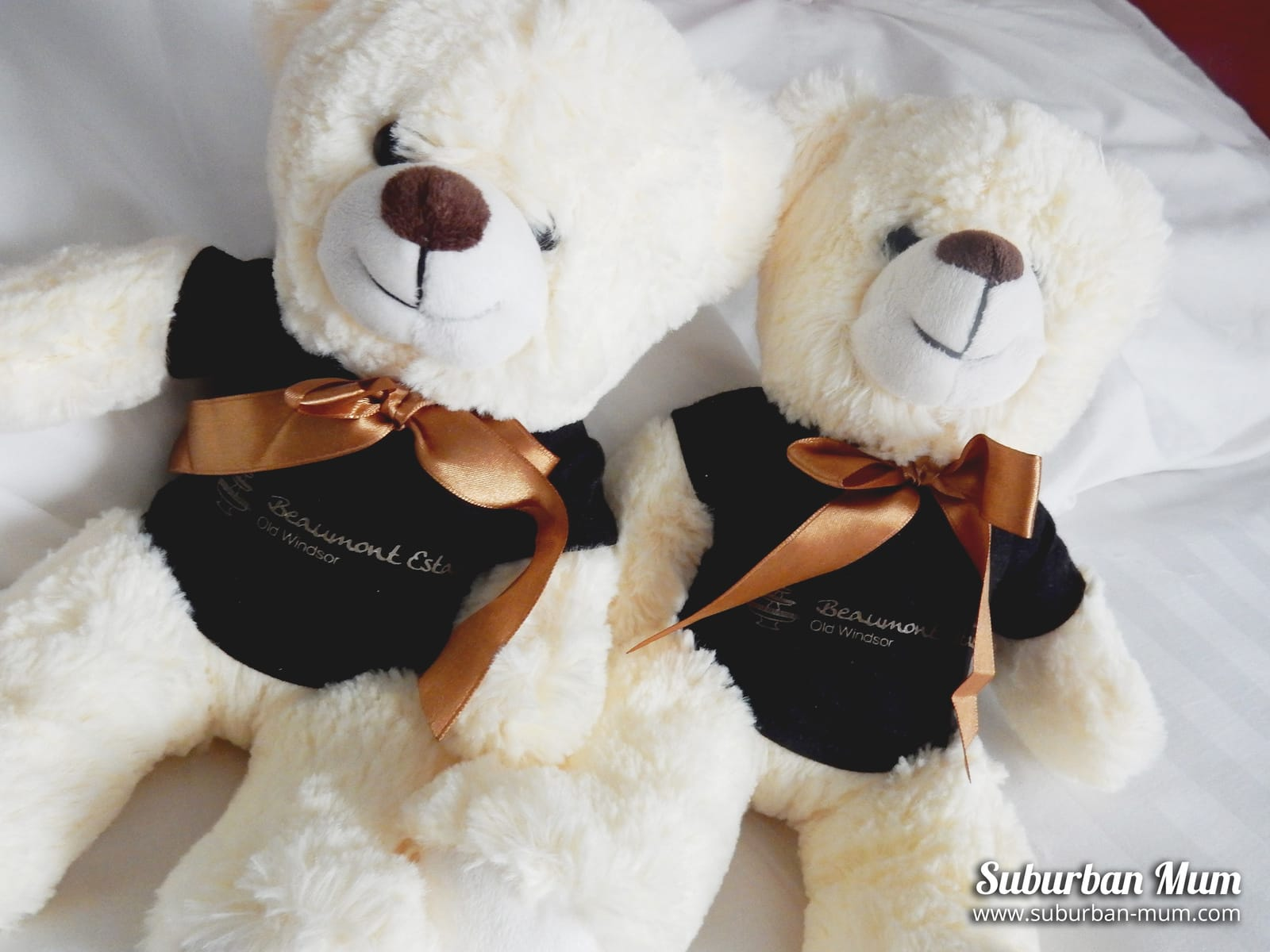 beaumont-estate-teddies