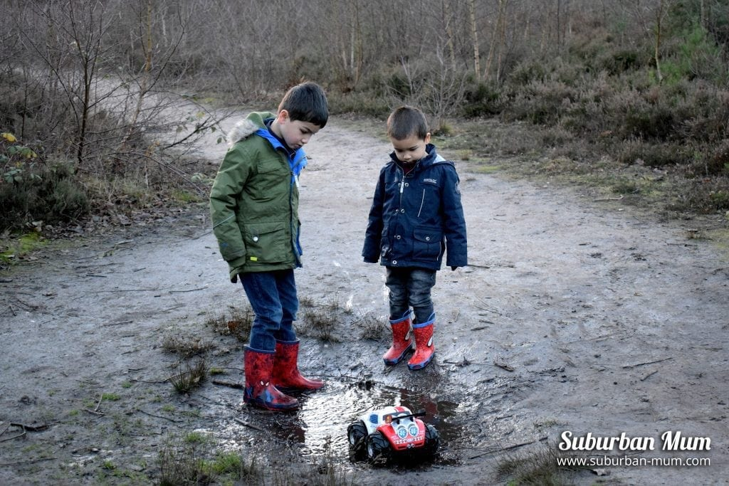 Woodland Family Walks: Tips for having the best experience