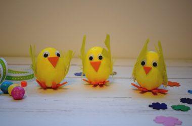 easter-chicks-ft