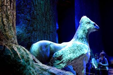 forbidden-forest-buckbeak-ft
