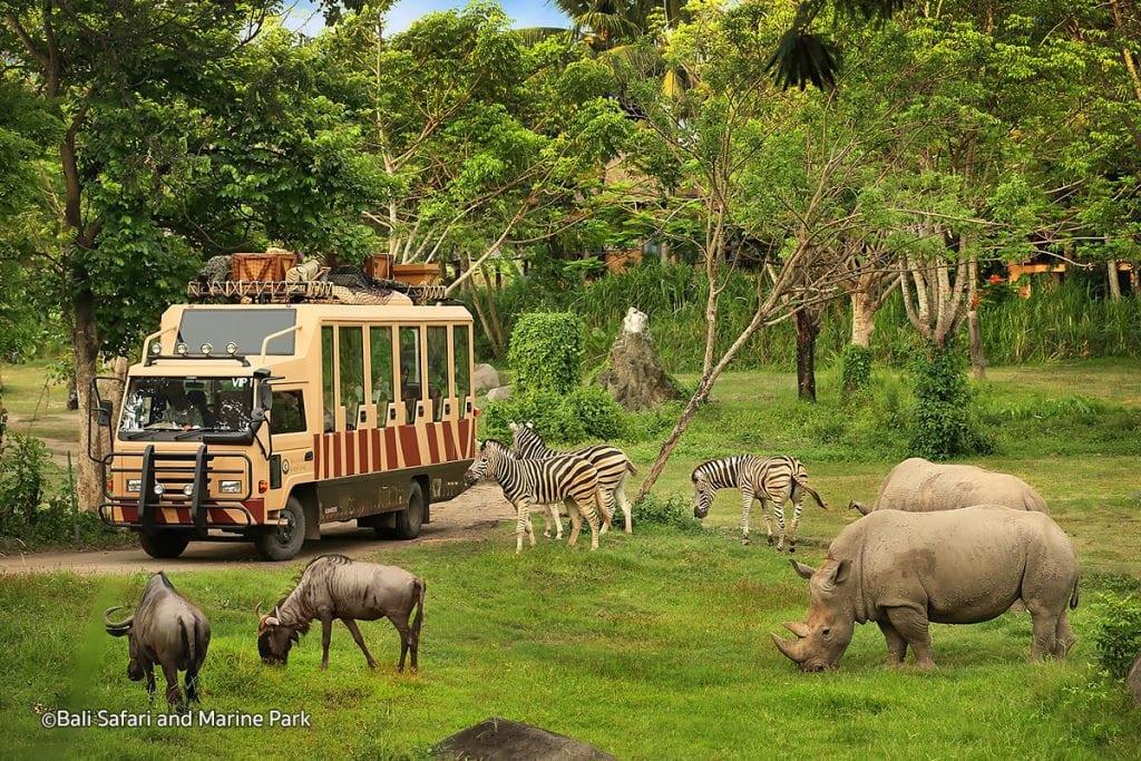 Safari Marine Park, Bali
