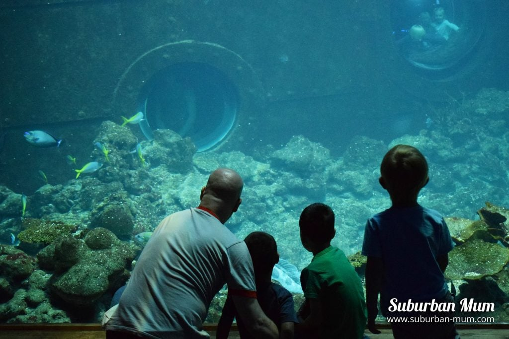 Tropen Aquarium
