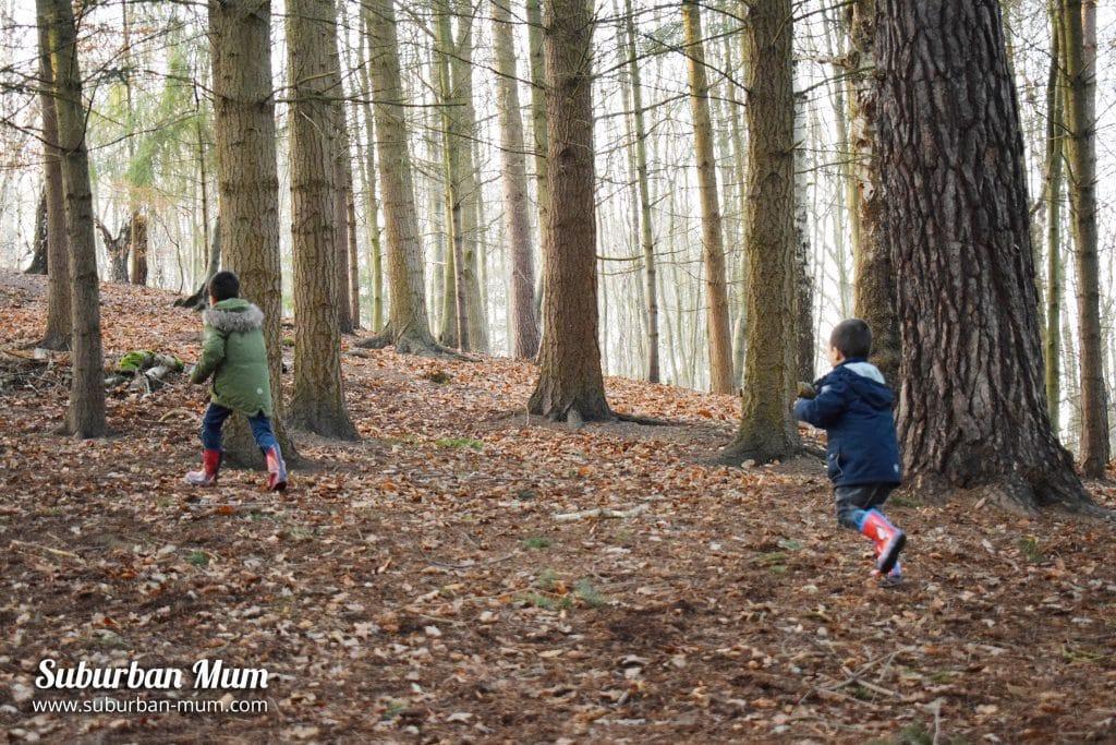 boys-in-woods