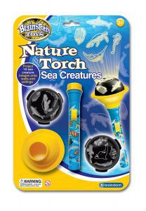 sea-creatures-torch