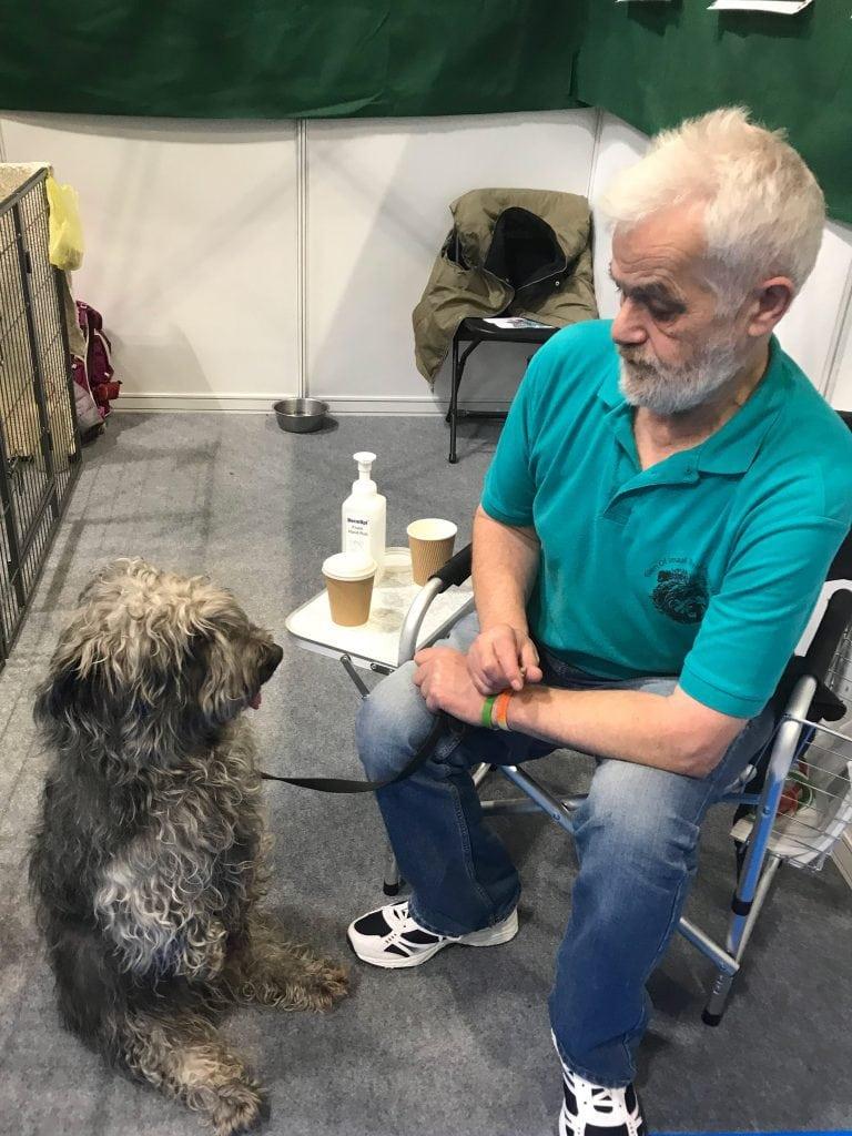 national-pet-show-dog