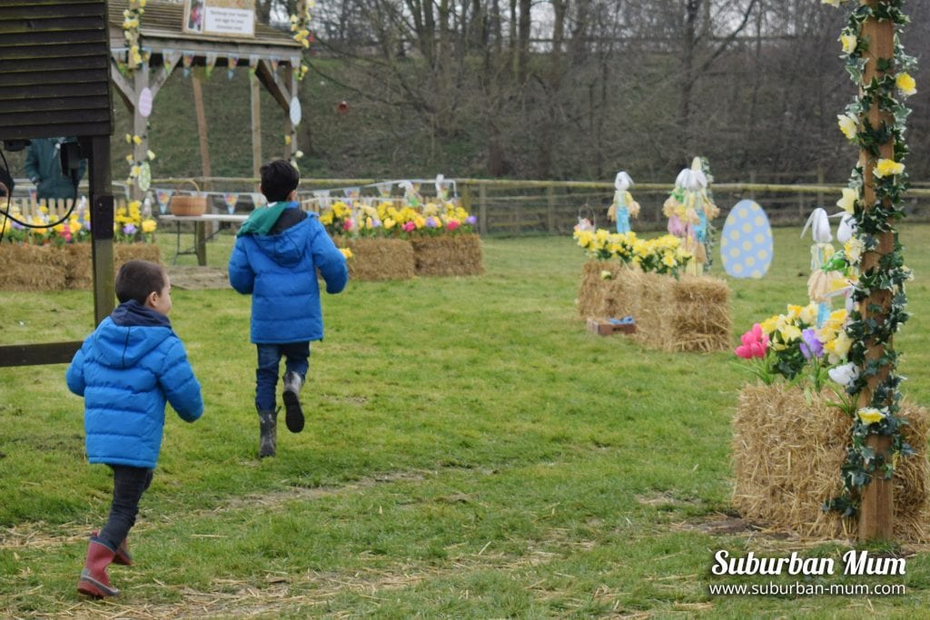 willows-activity-farm-egg-hunting
