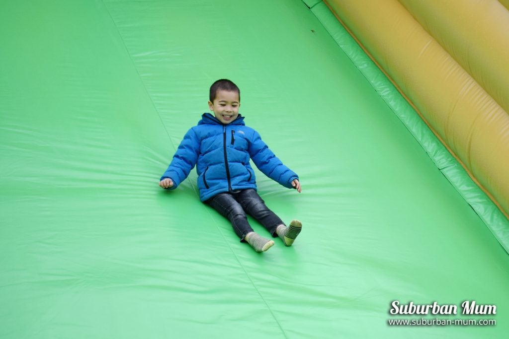 willows-activity-farm-inflatable-slide