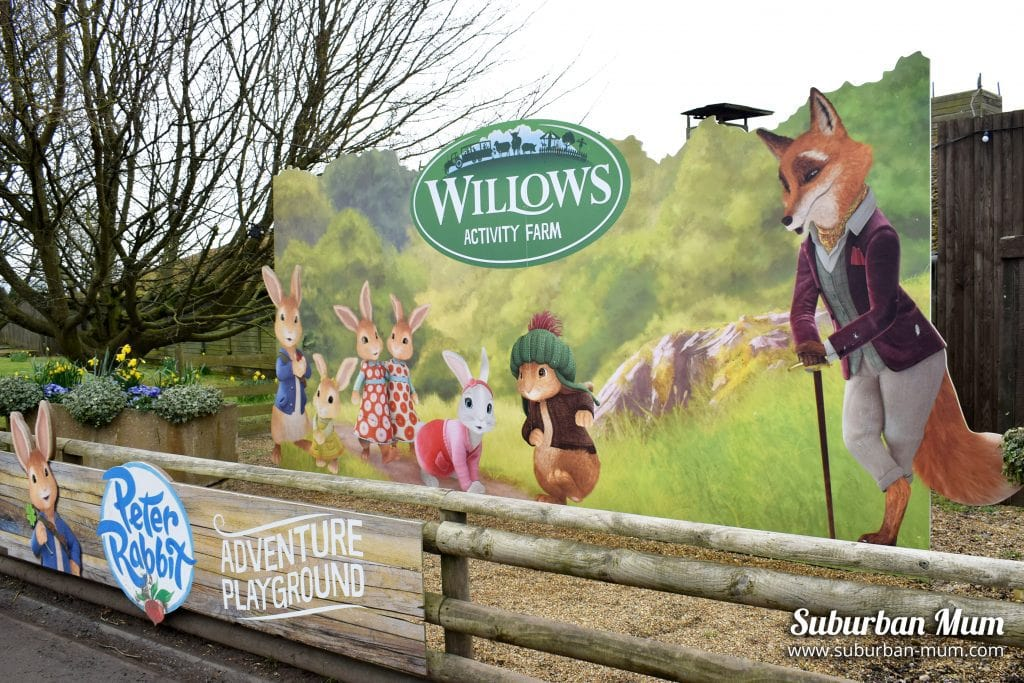 willows-activity-farm-mr-tod