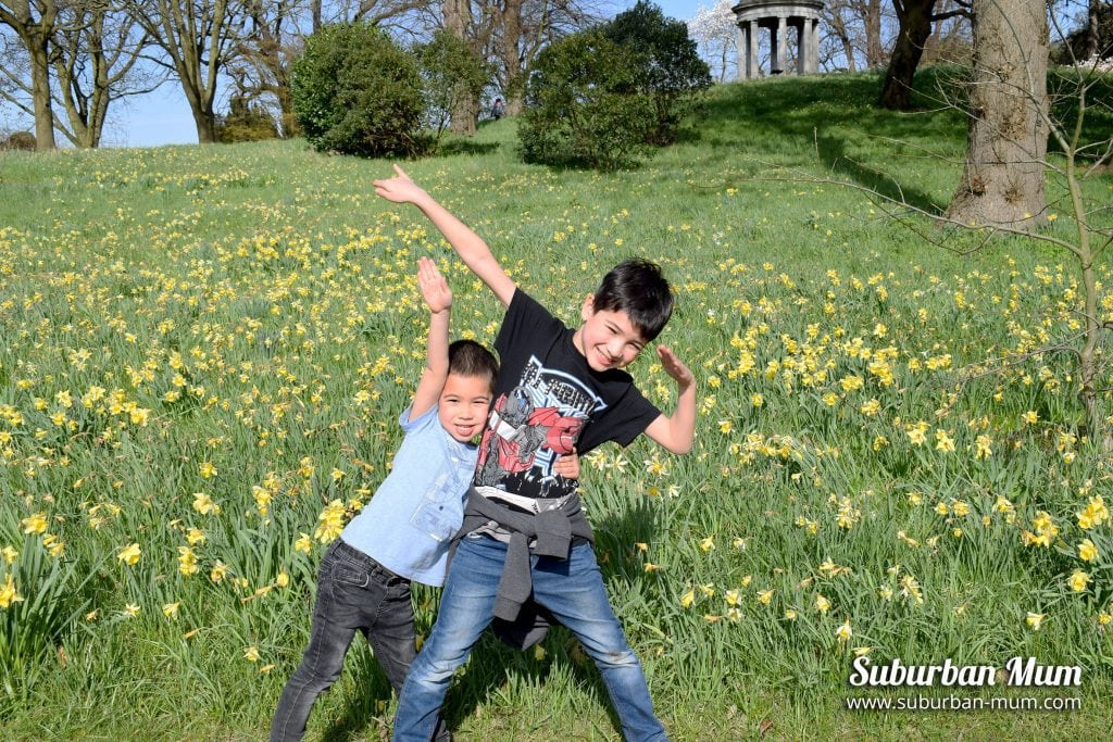 kew-gardens-boys-daffodils