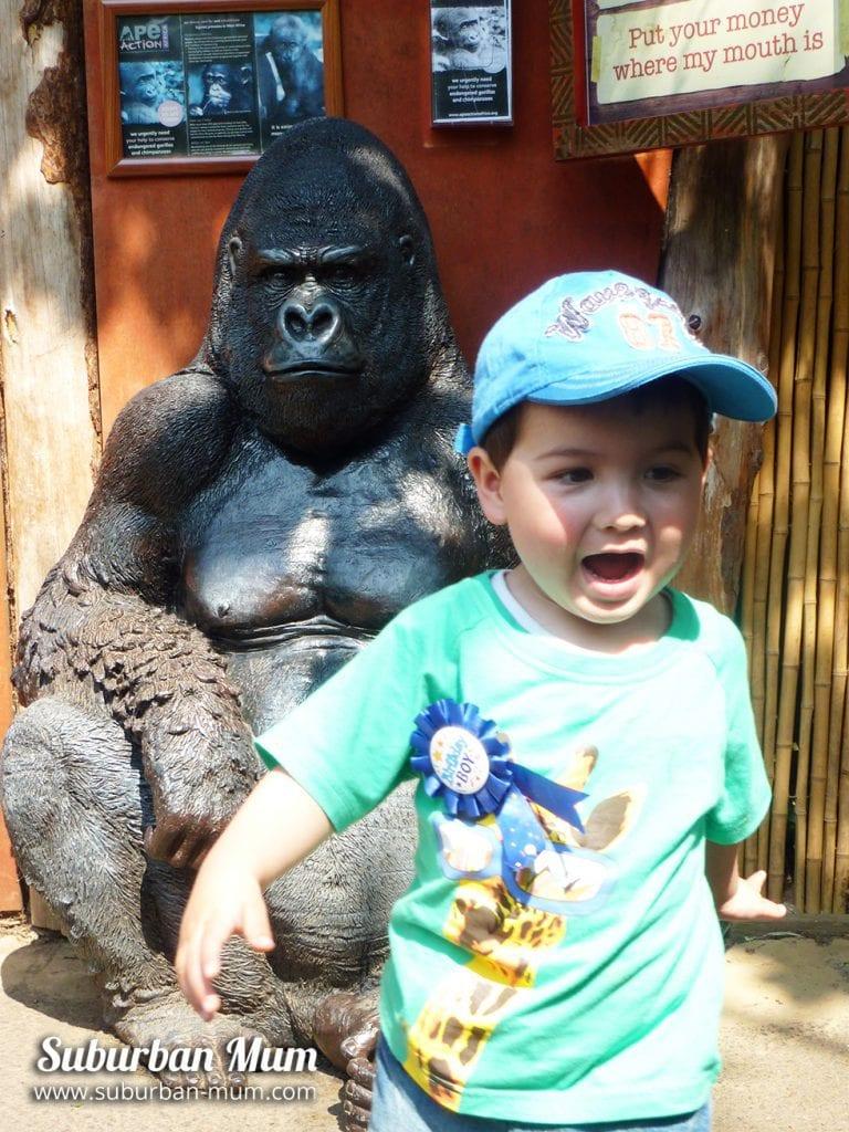 e-chessington-2-years-old