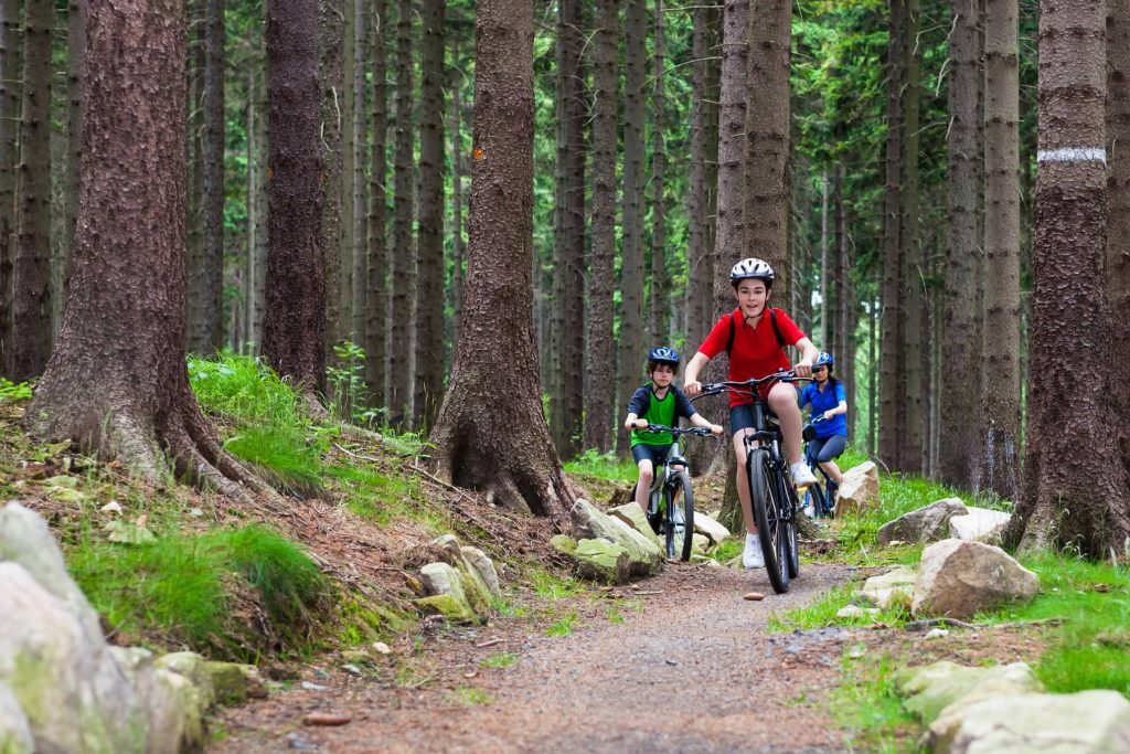 Top tips for mountain biking with kids