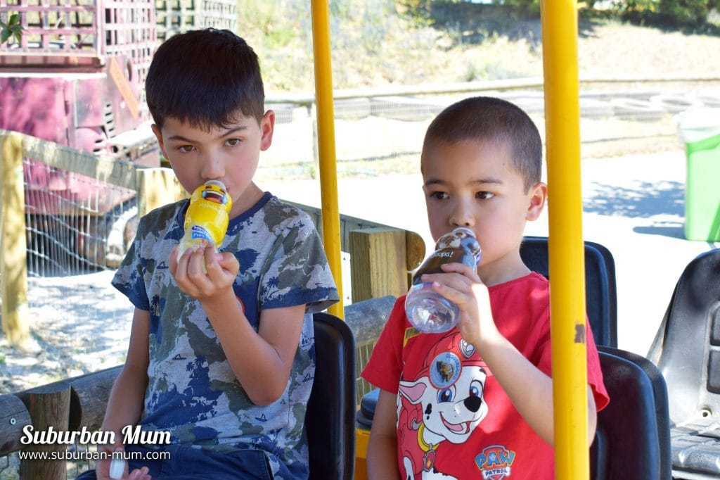 Keeping the kids hydrated with Nestlé® Pure Life® Water Buddies