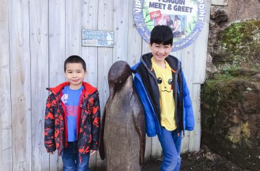 boys-penguins-chessington-ft