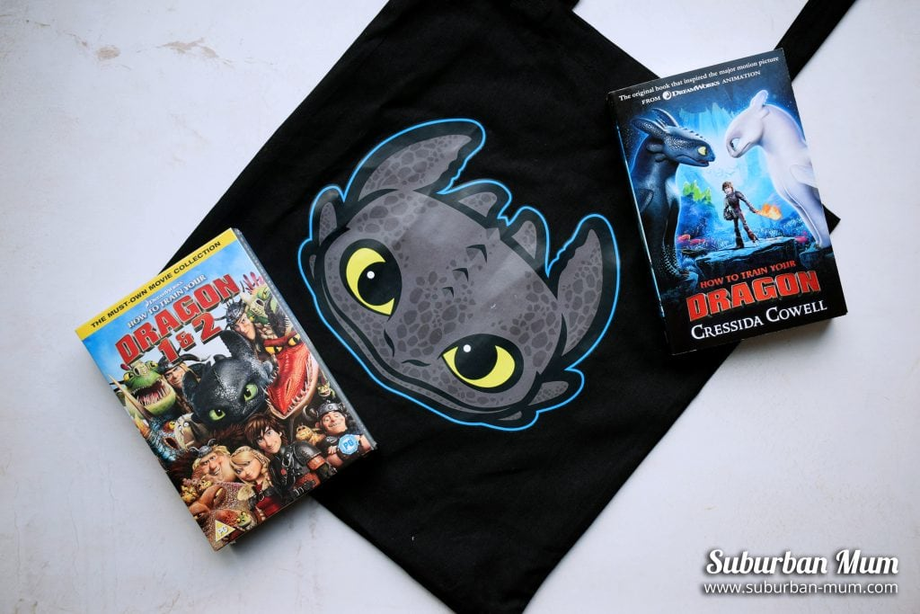 How to Train Your Dragon - goody bag