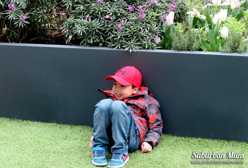 m-hide-seek-floating-pocket-park