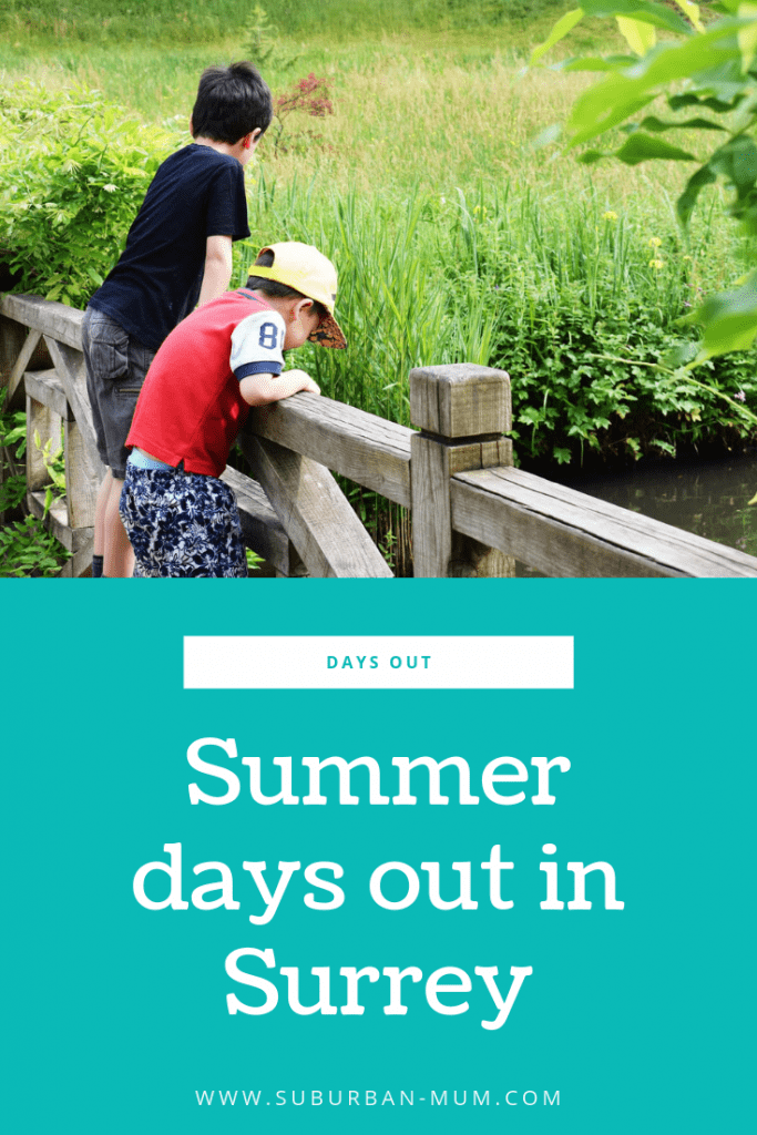 Summer Days Out in Surrey