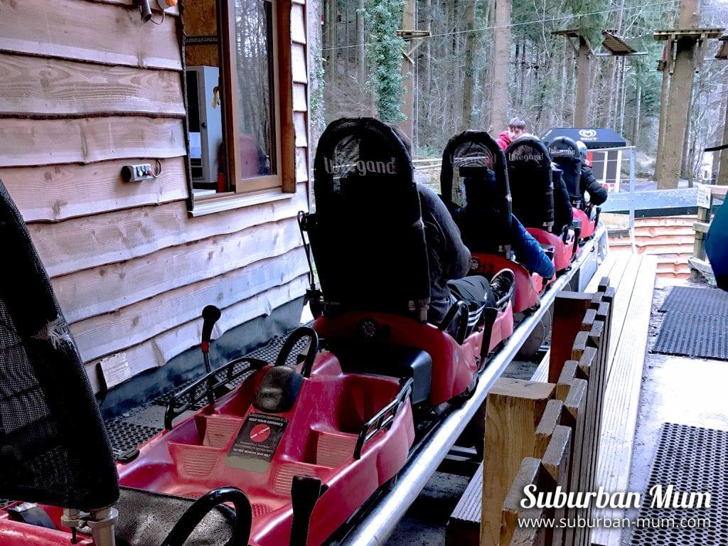 Zip World Fforest coasters