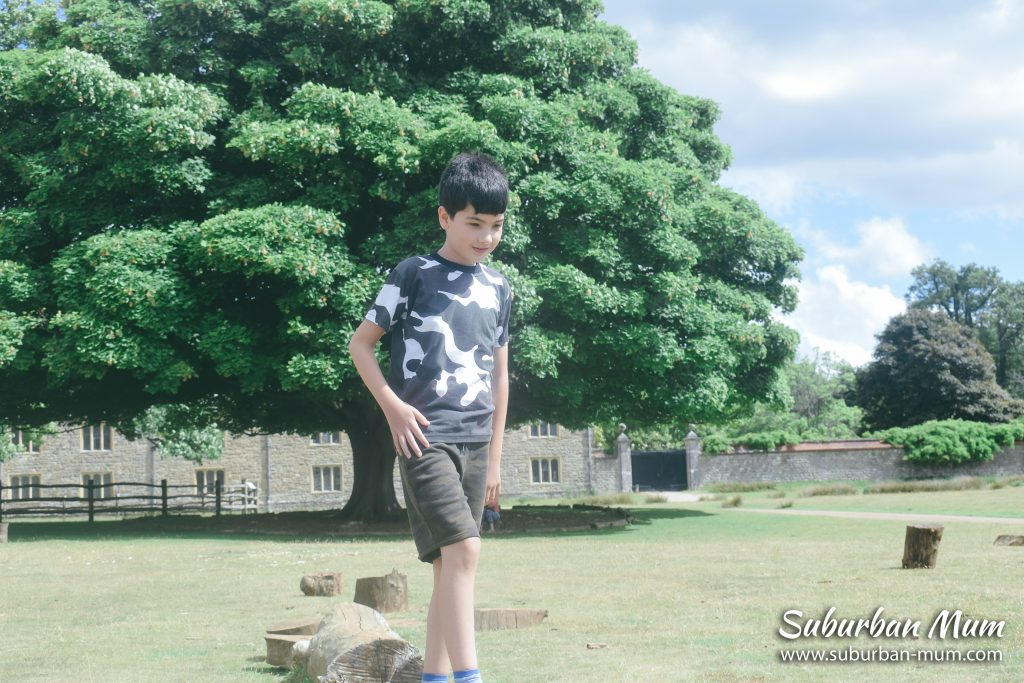 e-stepping-logs-knole-park