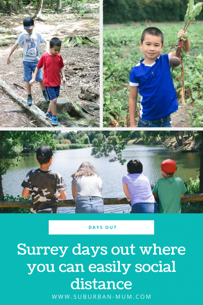 Surrey-days-out-where-you-can-easily-social-distance