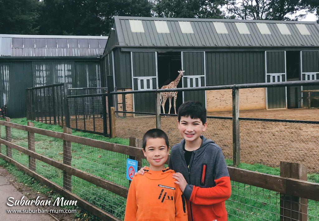 boys-whipsnade-zoo