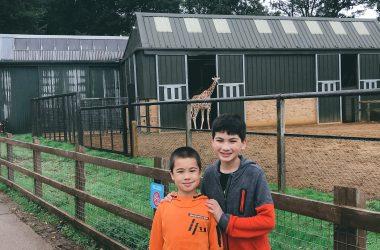 boys-whipsnade-zoo-ft